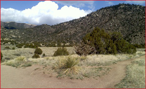 Routes Bicycle Rentals & Tours. Sandia Mountain and Foothills Albuquerque, New Mexico by bike.
