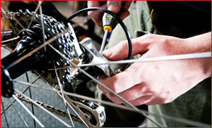 Routes Rentals & Tours - The best bicycle maintenance service and repair at the best value!