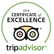 Routes Earns TripAdvisor's Certificate of Excellence for 3rd Year in a Row!