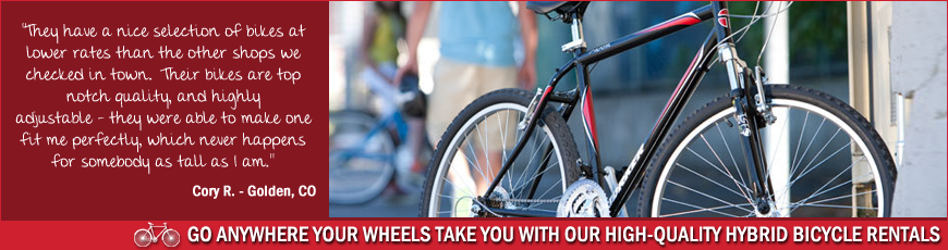 Routes Rentals & Tours, Albuquerque Bicycle Rentals Hybrids